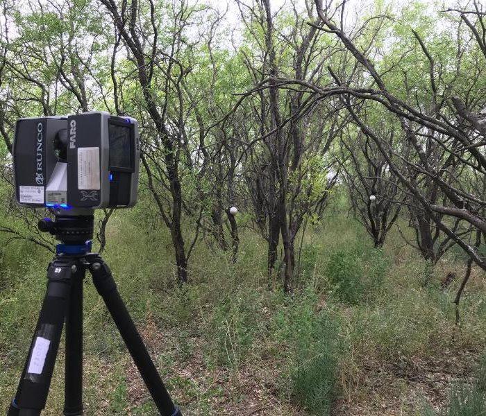 Nuevas tecnologías para caracterizar la estructura de los bosques
