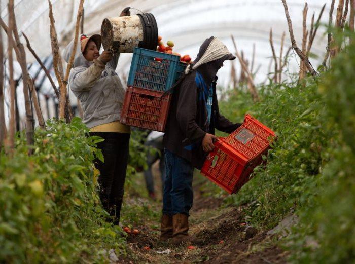Lanzan capacitaciones de concientización y prevención del trabajo infantil