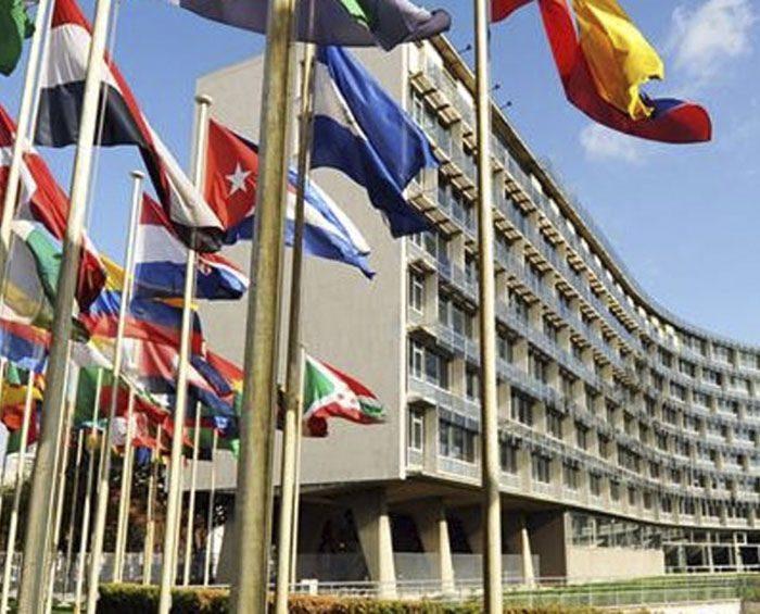 Unesco emitió consejos sobre cómo vivir y estudiar mientras dure la pandemia