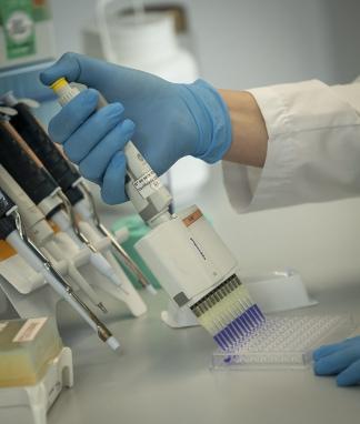 """""""Con el suero Argentina tendría su primera estrategia propia contra el coronavirus"""""""
