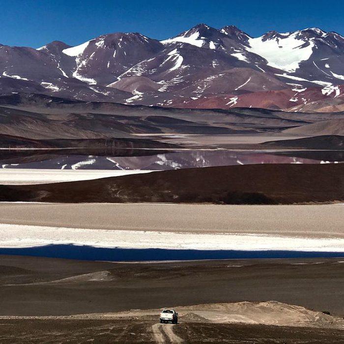 """""""En los salares y volcanes de la puna, la vida prospera pese a las 'condiciones extraterrestres' que presenta el entorno"""""""