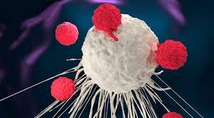 """OMS sobre el Coronavirus: """"Esperamos acabar con esta pandemia en menos de dos años"""""""