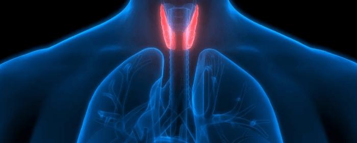 Novedades para la curación del cáncer de tiroides