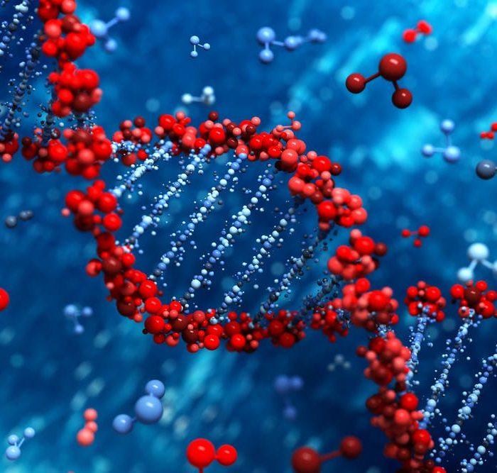 La eliminación de una proteína en células tumorales podría mejorar el desempeño de la quimioterapia