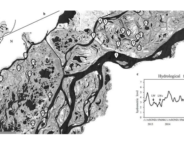 Metacomunidades Bacterianas del Paraná: un modelo para entender cómo se estructura su biodiversidad