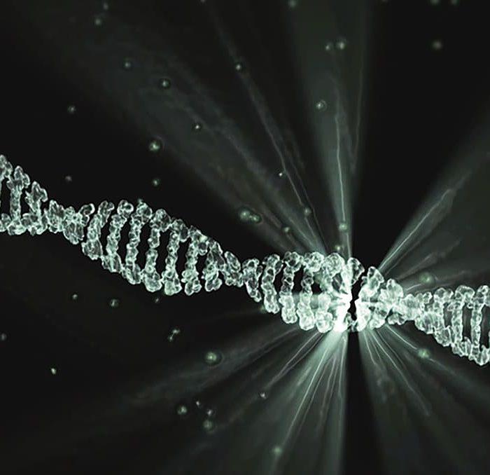 El ácido valproico puede modificar el ADN e interactuar con proteína de los cromosomas