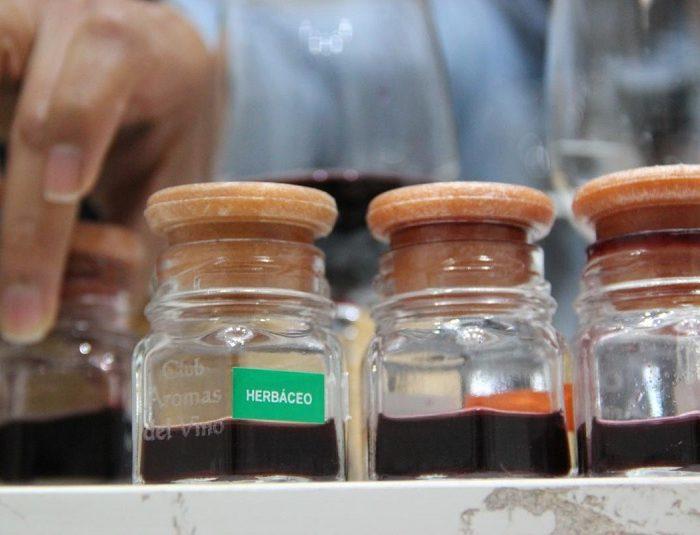Estudian el impacto de los suelos salinos en los vinos y viñedos