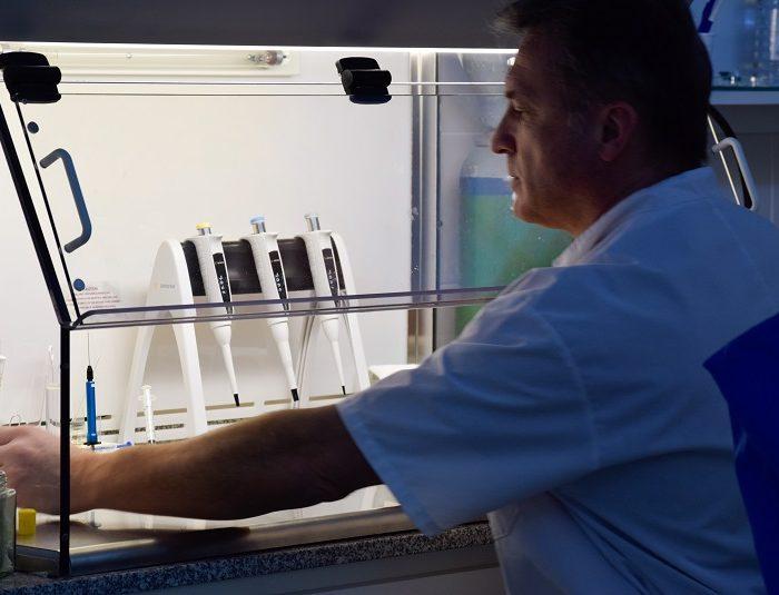 Nacen los primeros corderos patagónicos tras optimizar tecnología in vitro