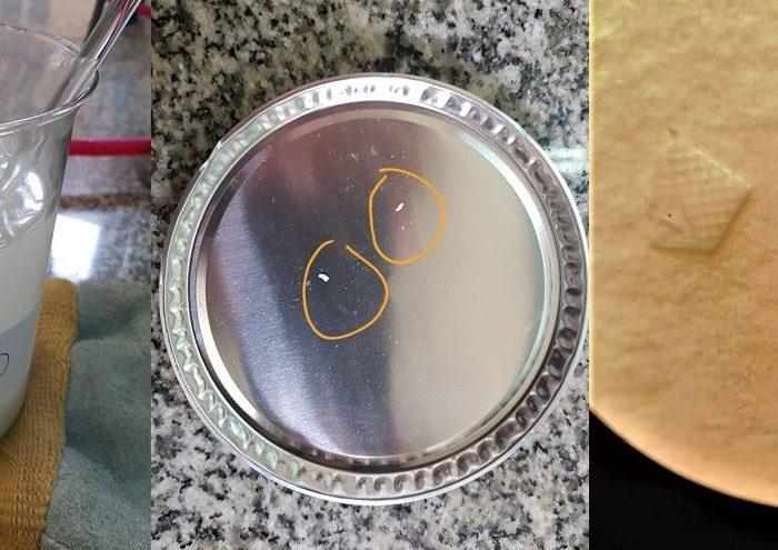 Del mar a la mesa: Detectan microplásticos en sales finas marinas
