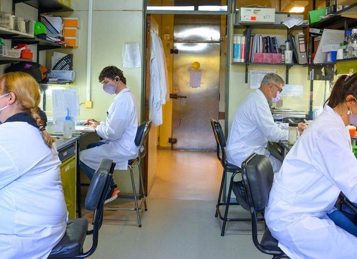 Científicos argentinos avanzan en una vacuna de segunda generación contra el coronavirus