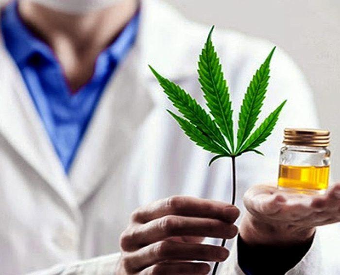 El INTI analizará flores secas de cannabis para la elaboración de derivados médicos