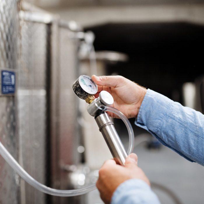 Vino, cerveza y sidra: impulso a la producción en el sur